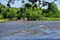 De Grand River