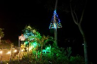 Kerstverlichting bij Ronny's Place