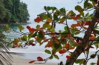 doorkijkje naar het strand van Manuel Antonio NP