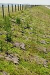 Close-up van de dijk met basaltblokken waarmee het gat tussen de duinen is gedicht