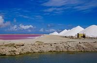 Een roze zoutmeer