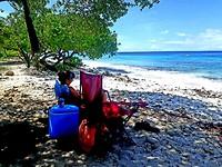 Lezen onder een boom aan het strand