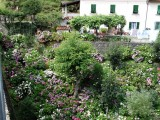 En een mooi tuintje