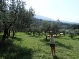 Inge tussen haar geliefde olijfbomen