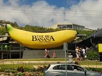Coffs Harbour, ook wel the big banana