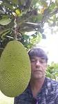 Henri en Jackfruit