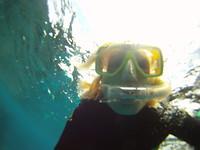 Snorkelen in het Great Barrier Reef