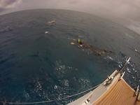 Henri aan het snorkelen