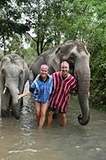 Samen de olifanten wassen