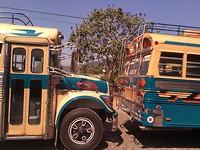 """Antigua. De typische """" chickenbus"""" is nog altijd even mooi!"""