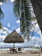 Mambo Beach View
