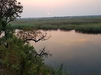 uitzicht wetlands vanuit lodge