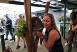 Koala and me!