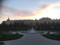 Sunset in het park