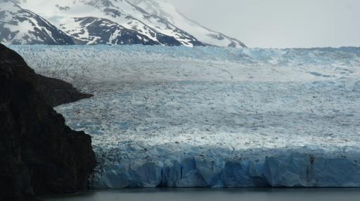 gletsjer Grey