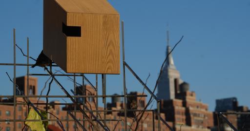 vogelhuisje in highline park
