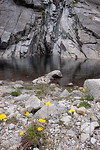 Bergmeer boven in hte regenwoud