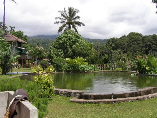 prive natuurzwembad bayan foto ingah around the world