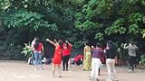 Dansles in het park