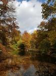 Nog steeds prachtige herfstkleuren in Central Park