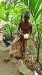 Openhakken verse kokosnoot tijdens dorpswandeling