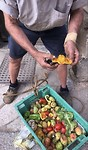 Malta fruit 🍏🍐🍊🍓