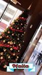 Gezellige kerstsfeer op Malta 🎄