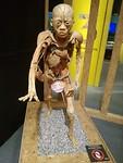 Body World tentoonstelling