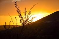 Zonsondergang bij Arumvale