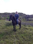 Jacq op n iceland horse