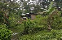 Huisje in Yaupi