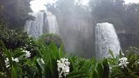 Iguazu cataratas. Argentijnse kant