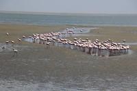 190930 Namibie_0094