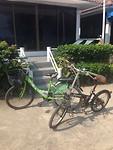 IMG_6016onze fietskes