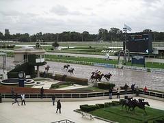 Paardenrennen in Buenos Aires