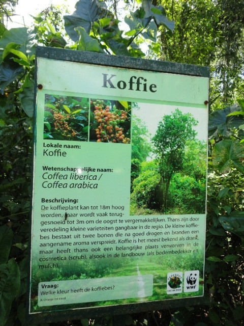 Bij sommige planten/bomen stonden informatieborden