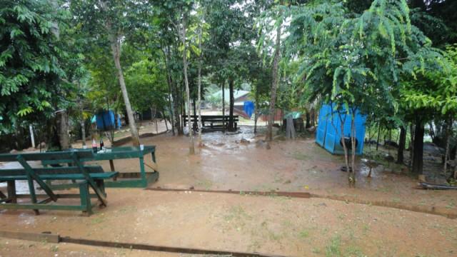De tuin tijdens de regen