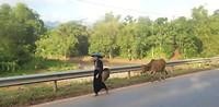 20 september - klederdracht van de Black Thai
