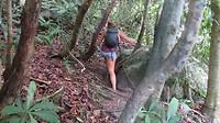 Wandeling door de jungle richting Monkey Beach