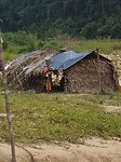 Orang asli village