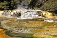 Waimangu Volcanic Valley 01