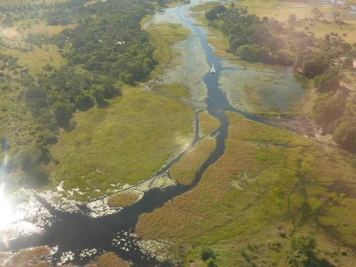 02 Okavango Delta 1 (1280x960)