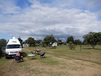 Ohope camping