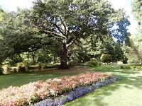 Tuinen in Wellington