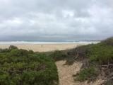 Strand bij Cape St. Francis