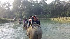 De elephant ride 2