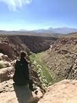 Uitzicht over de woestijn