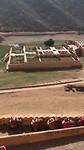 Olifanten bij het Amber Fort