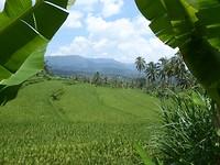 foto 18 Mayong Cultural Walk