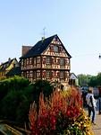 Overal de prachtige bloemen in Colmar